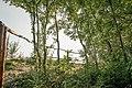 Kurcaparti tanösvény Mindszent - panoramio (43).jpg