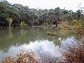 LAGO MARGENS MT-020 - panoramio.jpg