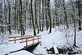 La promenade Panissod de Pregny-Chambésy en hiver.jpg