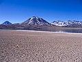 Laguna et volcan Miscanti.jpg