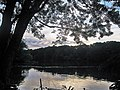 Lake Carnegie viewed from The Mapleton Aqueduct and footbridge in The Delaware and Raritan Canal State Park, Princeton, NJ, USA - panoramio - Gary Miotla (1).jpg