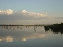 Lake baringo.jpg