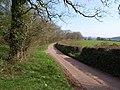 Lane at Dorweeke Cross - geograph.org.uk - 1824113.jpg