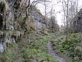 Lathkill Dale Footpath - geograph.org.uk - 718103.jpg