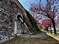 Le Mura di Como ... in fiore.jpg