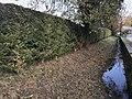 Le cours d'eau Gardon à Mollon (Villieu-Loyes-Mollon, Ain, France) - 3.JPG