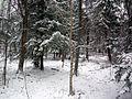 Le parc de la terre des jeunes - Victoriaville - Centre-du-Québec 24.JPG
