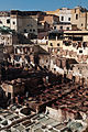 Leather tanning in Fes (5364394179).jpg