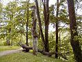 Lielvārdes parka koka figūras 2000-05-20 - panoramio - J. Sedols (1).jpg