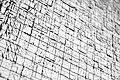 Lines (15193482843).jpg