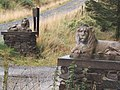 Lions in the Forest^ - geograph.org.uk - 55529.jpg