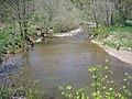 Little Cacapon River Creekvale WV 2007 05 07 03.jpg
