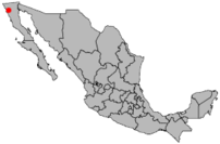 Location Ensenada.png