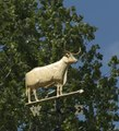 Longhorn weathervane atop the Gonzales County Courthouse in Gonzales, Texas LCCN2014632652.tif