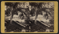 Looking east from North Mill Dam Falls, Little Falls, N.Y, from Robert N. Dennis collection of stereoscopic views 2.png