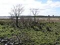 Lough Erne, Enniskillen - geograph.org.uk - 375070.jpg
