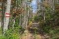Lovćen national park, Primorska Planinarska Transverzala, Montenegro 101.jpg