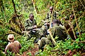 Lunch With the Scouts, Bwindi,Uganda (16154413382).jpg