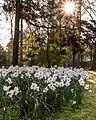 Münster, Park Sentmaring -- 2016 -- 1874.jpg