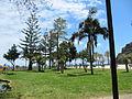 Madeira em Abril de 2011 IMG 2294 (5665254468).jpg