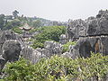 Major Stone Forest NE outer area 2.JPG