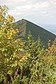 Malá Fatra 2009 - panoramio.jpg