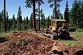 Malheur National Forest, Forest Service road decommissioning (35529499983).jpg
