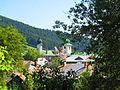 Manastirea Agapia - sat Agapia 04.JPG