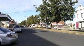 Manilla (1) .JPG