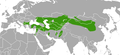 Marbled Polecat area.png
