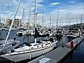 Marina del Rey P4070297.jpg