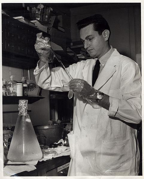 File:Marshall Nirenberg performing experiment.jpg