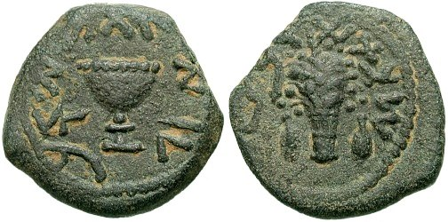 Masada coin