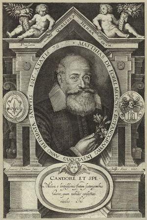 L'Obel, Matthias de (1538-1616)