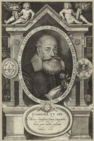 Matthias de l'Obel - Engraving by Francis Delaram, 1615