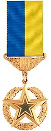 Medal of Golden Star Ukraine.jpg