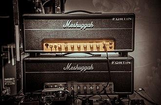 Fredrik Thordendal - Custom made amp by Mike Fortin, 2016