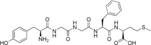 Met-enkephalin - Image: Met enkephalin