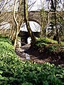Miles Dock - geograph.org.uk - 395607.jpg