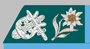 Militär-Kapellmeister der k.k. Gebirgstruppe 1907-18