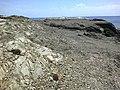 Minorque Cap Favaritx 23062015 - panoramio.jpg