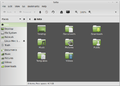 Mint10 filemanager.png