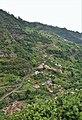 Mirador de Cruzinhas (2).jpg