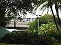 Monorail through trees.jpg