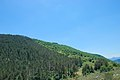 Montagne de la Fage et ses forêts domaniales.jpg