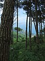 Monte Poro04.jpg