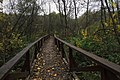 Moscow, footbridges over the swamp in Losiny Ostrov forest (30880218044).jpg