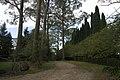 Mount Wilson NSW 2786, Australia - panoramio (75).jpg