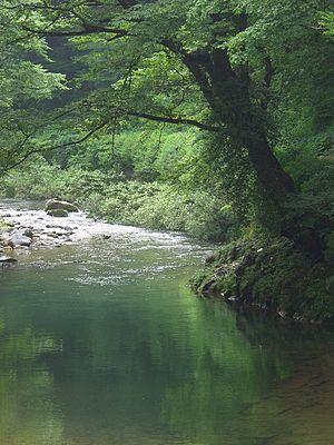 Komatsu, Ishikawa - Image: Mountain stream japan 001