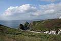 Mullion, above Mullion Cove - geograph.org.uk - 981871.jpg